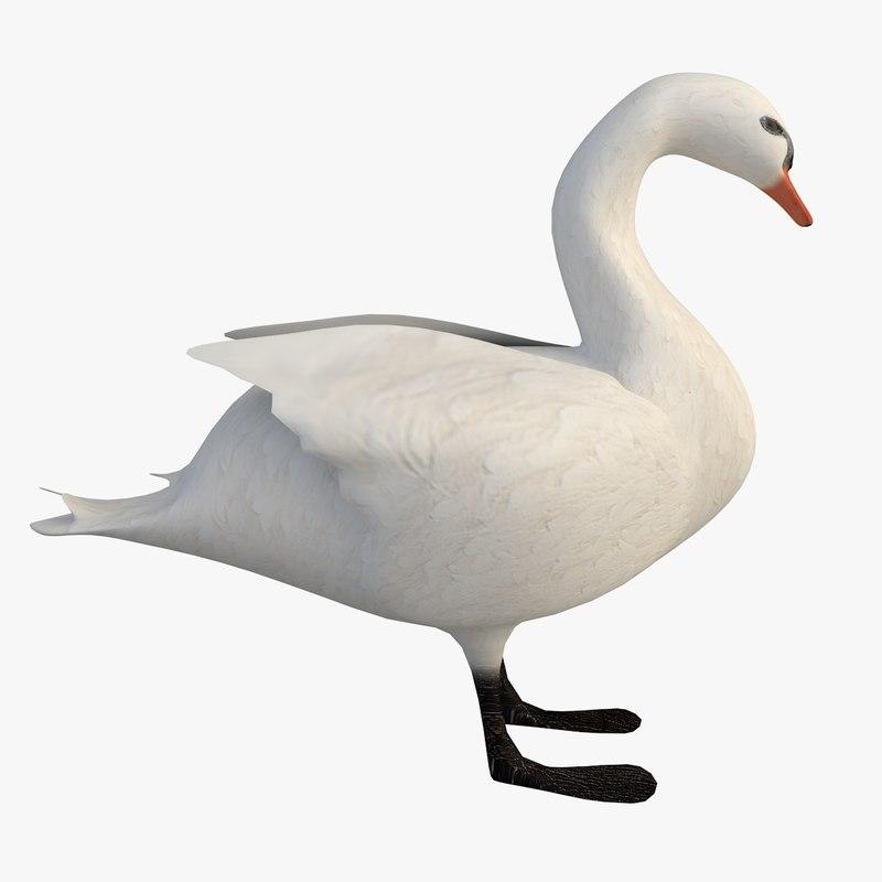 swan water model