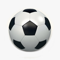 Soccer Ball with Play Ground