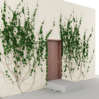 Ivy & doors