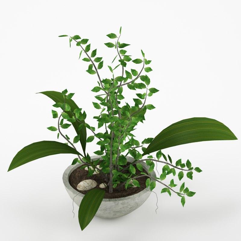 plant max8 3d max