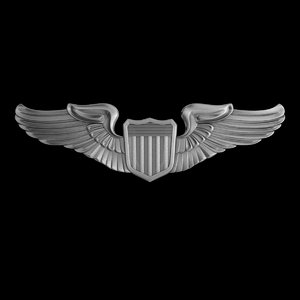 3d model air force pilot badge
