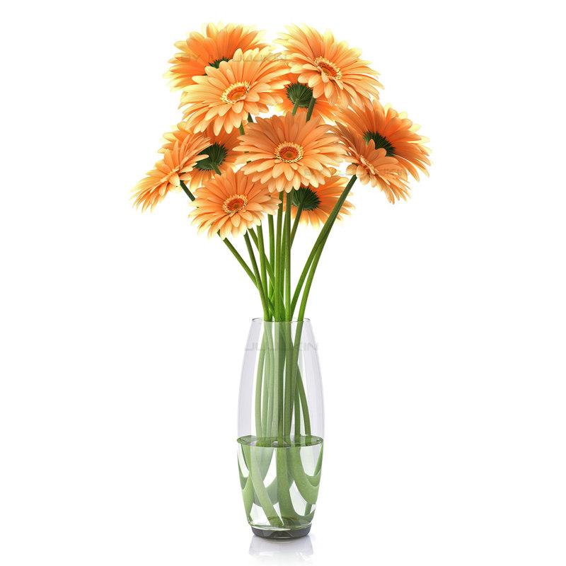 flower gerber gerbera 3d model