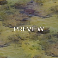 Shallow water 13
