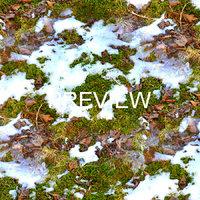 Snow on Leafy ground 01