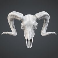 3d ram skull pendant print model
