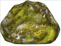 Mossy rock 08