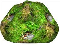 Mossy rock 10
