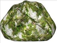 Mossy rock 12