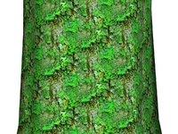 Mossy tree bark 14