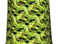 Mossy tree bark 02