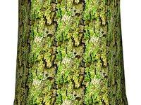 Mossy tree bark 09