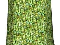 Mossy tree bark 08