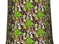Mossy tree bark 06