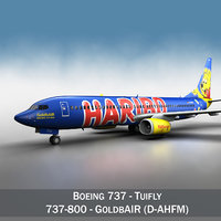 Boeing 737-800 GoldbAIR