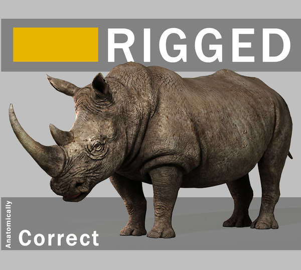 3d rigged rhino