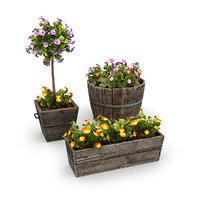Potted Plants Bundle 1A