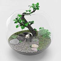Florarium_bonsai