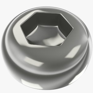 3D head screw