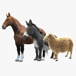 3d model animals horse donkey sheep