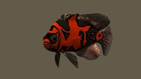 3D astronotus fish