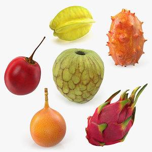 exotic fruits 3D