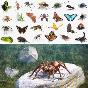 insects big 2 3D