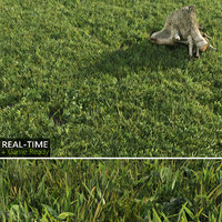 real-time lawn grass 3d model