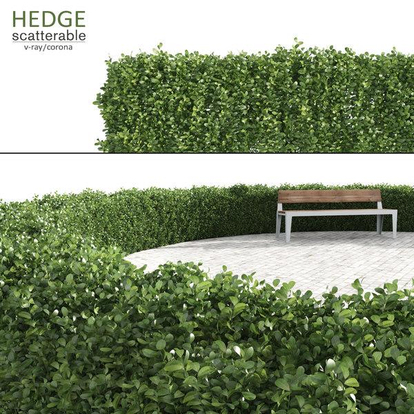 hedge multiscatter scattered 3d max