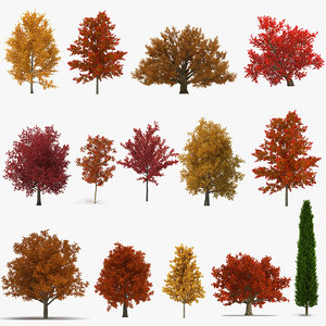 3D autumn trees 2 model