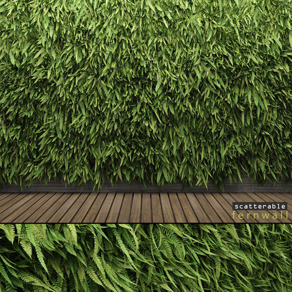 fern wall leptosporangiate multiscatter 3d obj