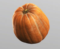 3D pumpkin 1 polly