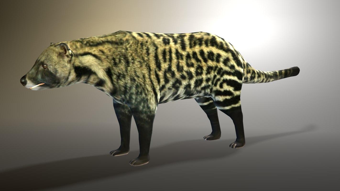 african civet 3D model