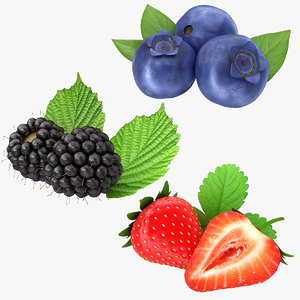 3D berry fruit set