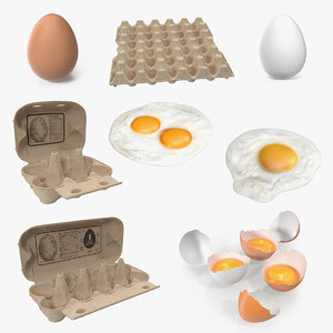 3D chicken eggs 3