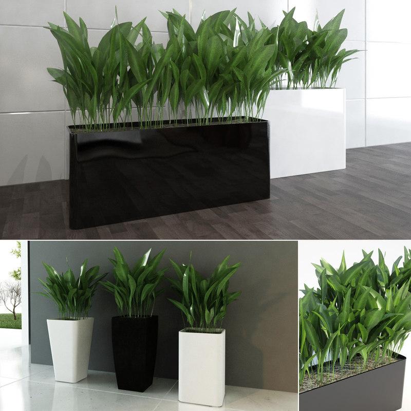 contemporary plants mini 3d max