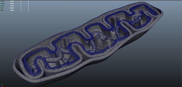3D model cells mitochondria