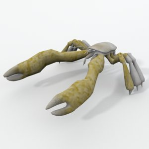 yeti crab 3D model