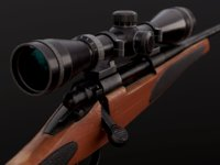 remington rifle 3D model
