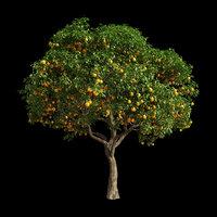 tree orange 3D