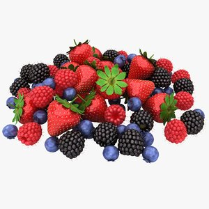 3D realistic berry fruit