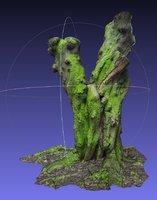 3D moss tree photogrammetry scan