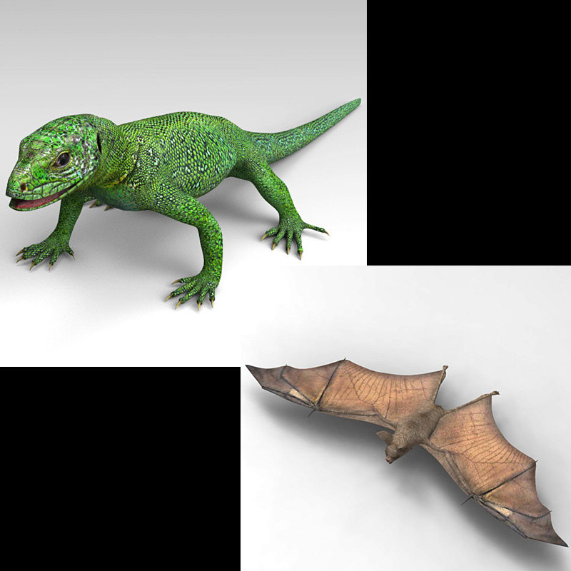 green lizard bat 3D model