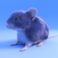 3D realistic mouse xgen fur