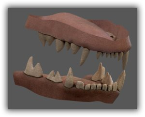 great white 3D
