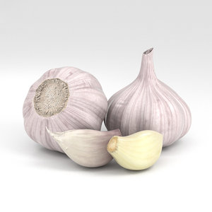 3D garlic vegetable food model