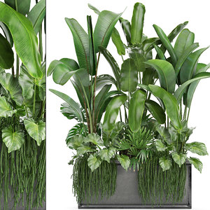 3D loft exotic plants