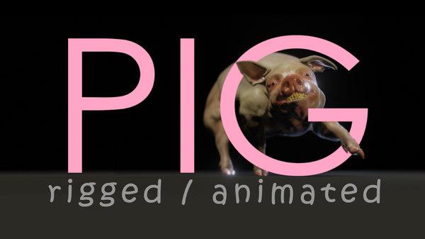 pig fur model