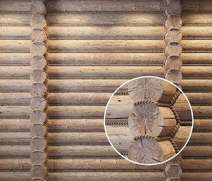 3D logs rope model