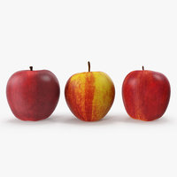 apples v-ray 3D model