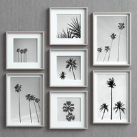 Picture Frames Set -43